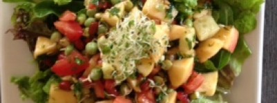 Crunchy Sprout Salsa
